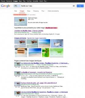 Résultat Google Search By Image